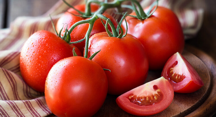 Fresh red ripe tomatoes on the vine on a dark rustic cutting board
